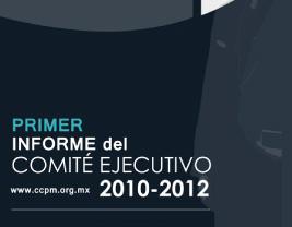 Infome anual 2010
