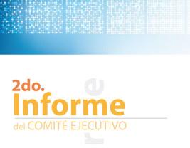 Infome anual 2011
