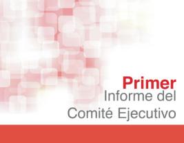 Infome anual 2012