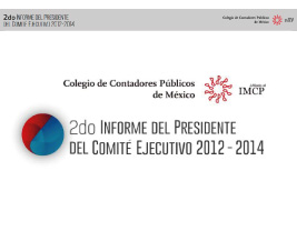 Infome anual 2013