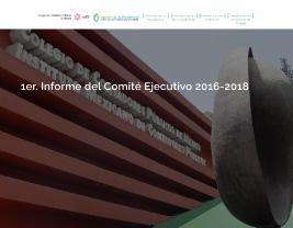 Infome anual 2016